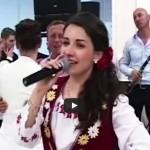 Diana Cârlig și Lăutarii din Ardeal – Colaj LIVE 2014 nunta Marius & Diana Șomcuta Mare