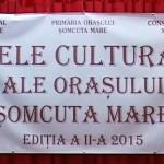 Zilele culturale ale oraşului Şomcuta Mare 25 Iulie 2015